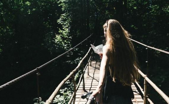 никола ленивец мост лес лавстори