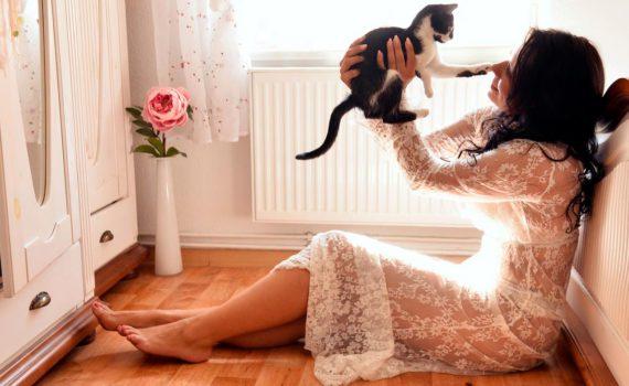 домашняя фотосессия с животными