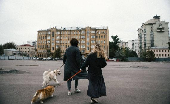Софья и Евгений лав стори