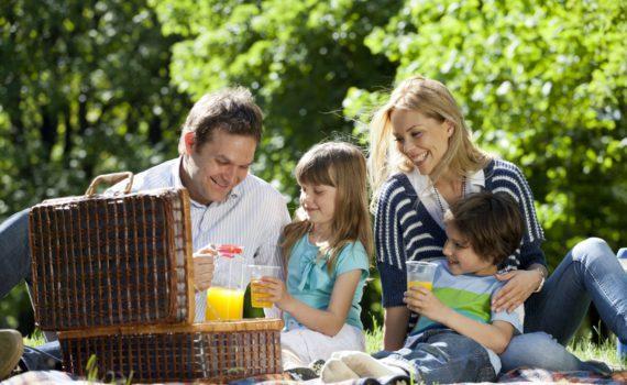 семейная фотосессия на пикнике