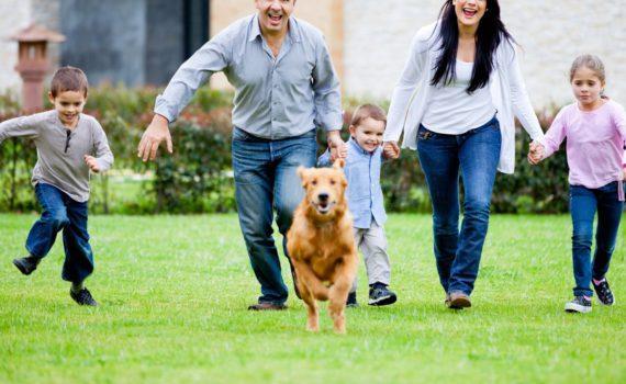 семейная фотосессия, с собакой