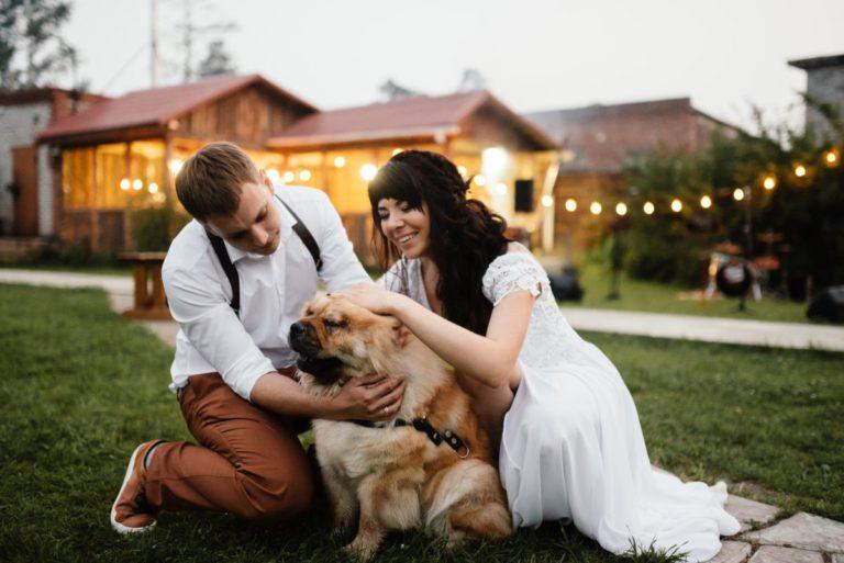 полный собаки пара фото сексуальной жизни