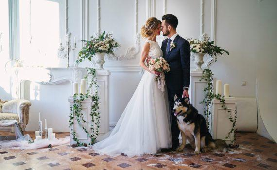 в студии свадебная фотосессия