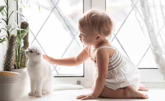 фотосессия годовалого ребенка дома с котом