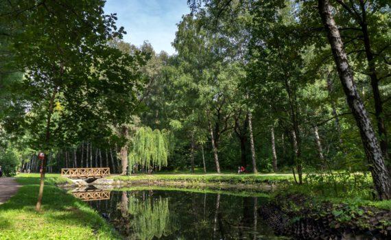 Парк Сокольники пруд
