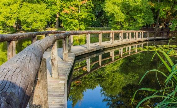 воронцовский парк мост